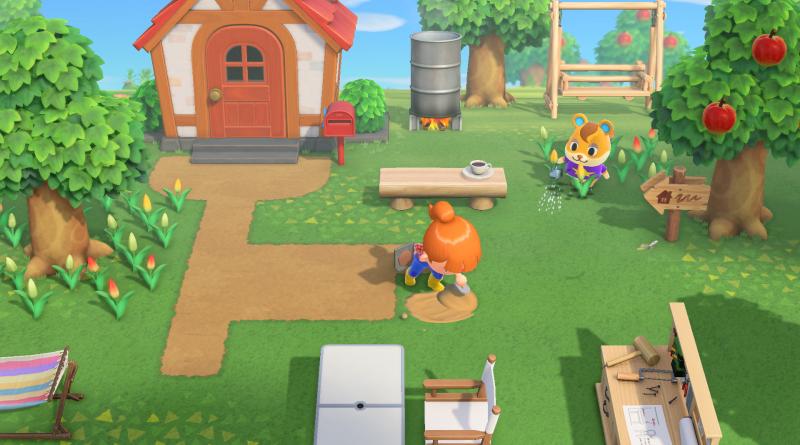 Nintendo Switch e Animal Crossing: New Horizons