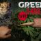 Green Hell sta arrivando in VR! E sarà epico.